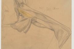 Anatomische Zeichnung der Oberarmmuskulatur, von hinten, 1902