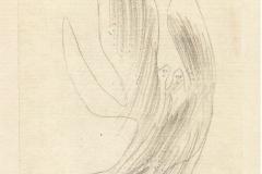 Engelpaar 1931,270 (X 10)