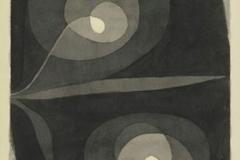 Spiralscheibenblüten, 1932,237 (V 17)