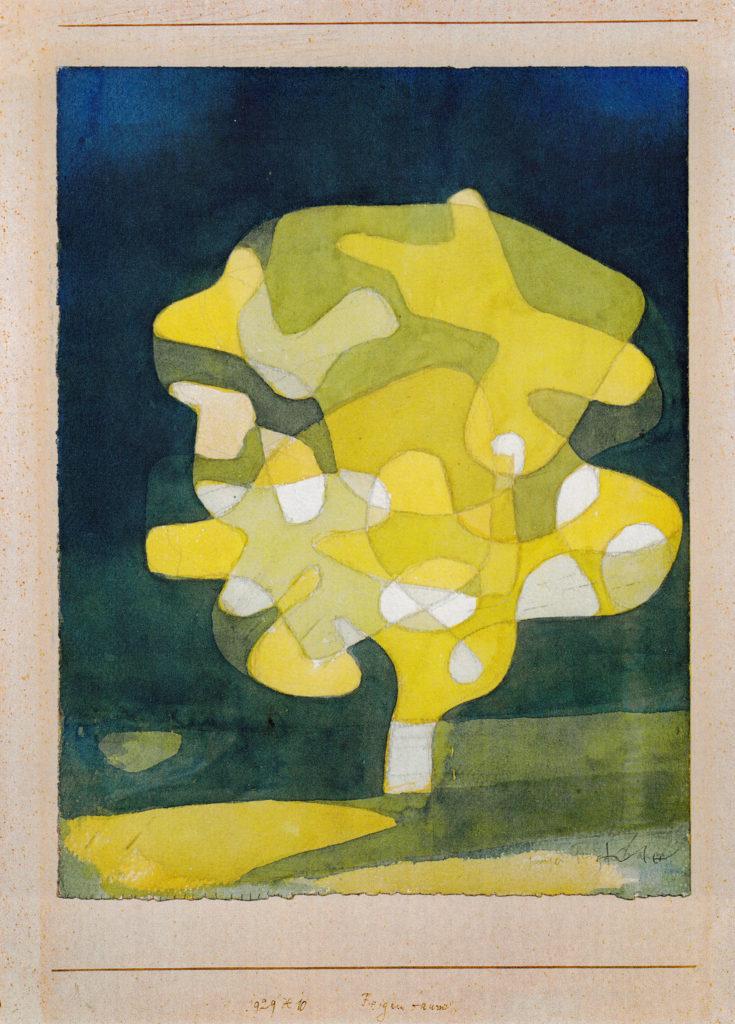Feigenbaum, 1929,240 (X 10)